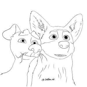 Corgi coloring book