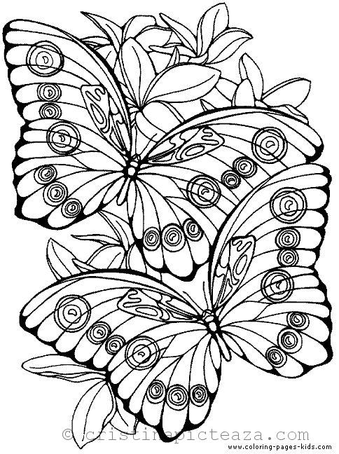 Butterfly Coloring Pages Butterflies For Coloring And Painting