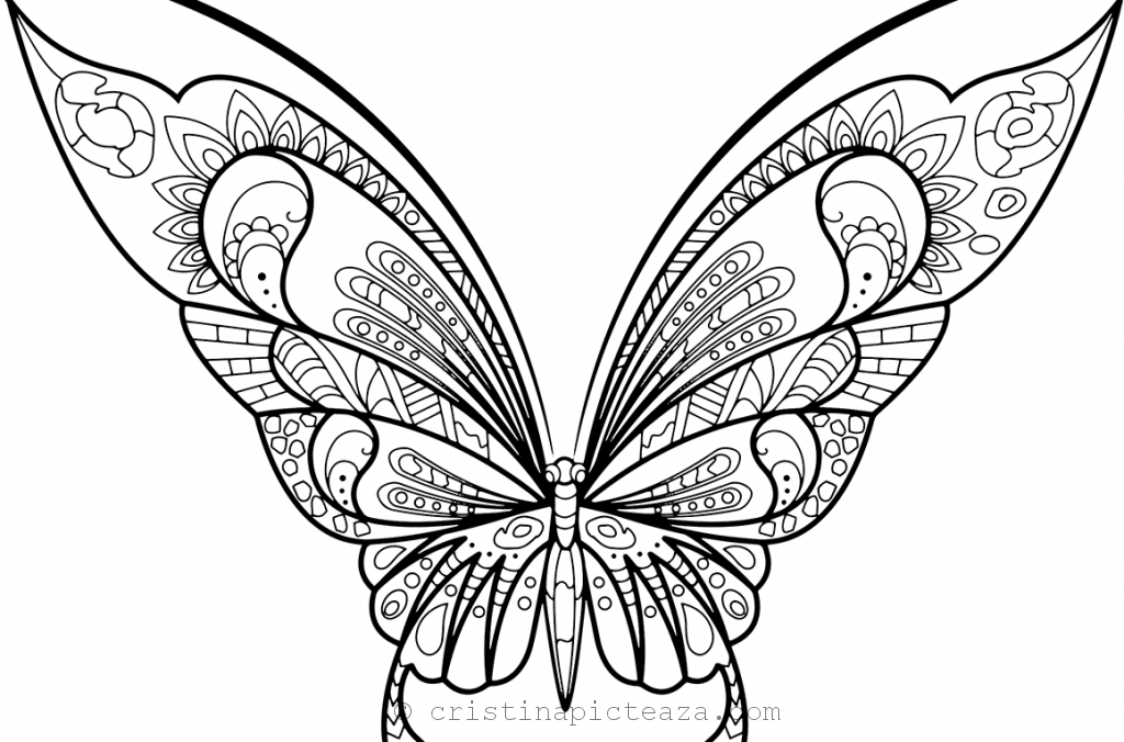 Butterfly Coloring Pages – Butterflies for coloring and painting