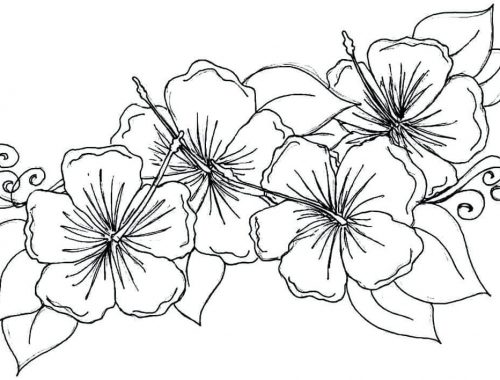 Planse de colorat - flower coloring pages