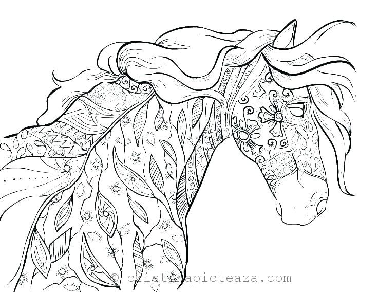 Horse Coloring Pages – Drawing sheets with horses